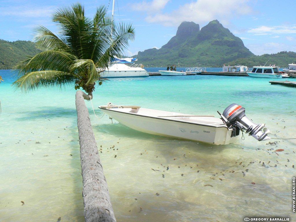 Fond D Ecran De Bora Bora Polynesie Francaise Par Gregory Barrallie 0005