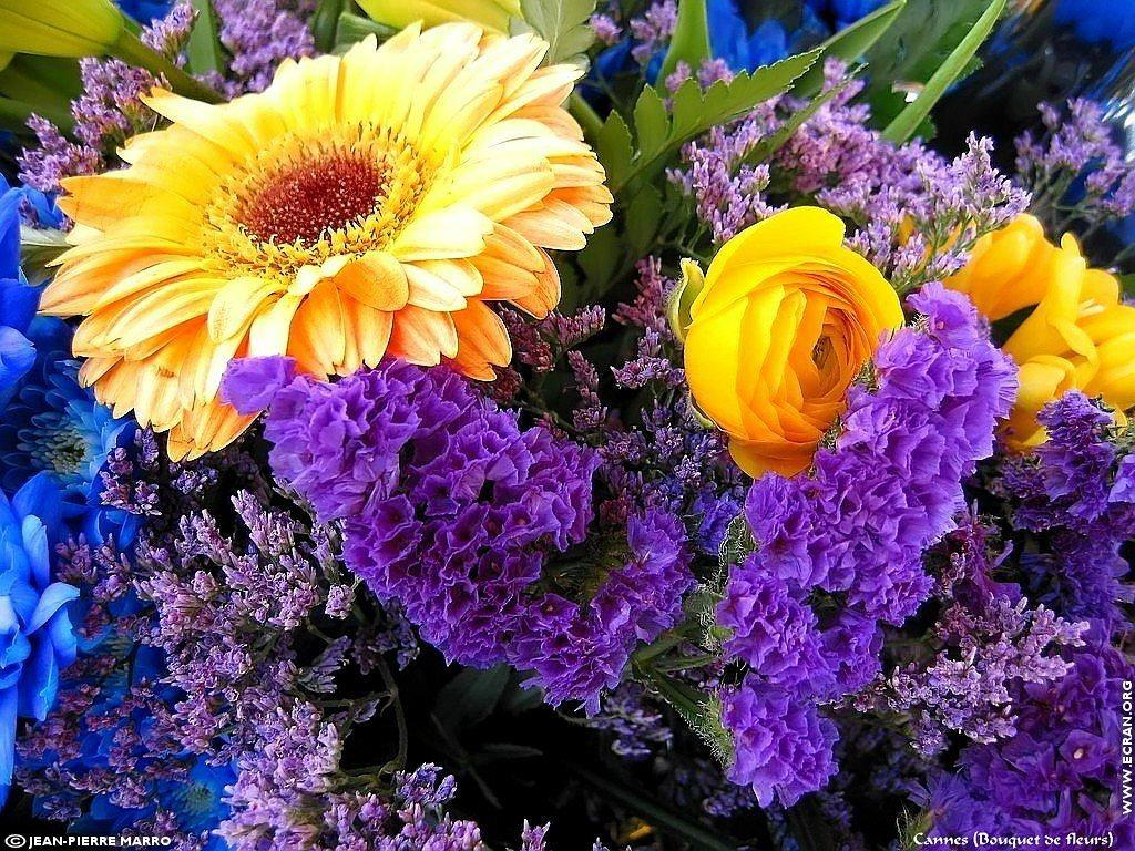 Fond ecran bouquet de fleurs for Bouquet de fleurs hd