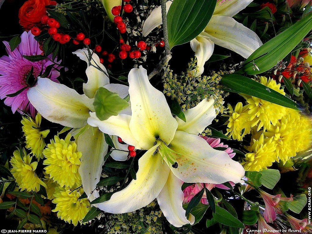 Fond d 39 cran de bouquets de fleurs cote d 39 azur provence for Fond ecran ete fleurs