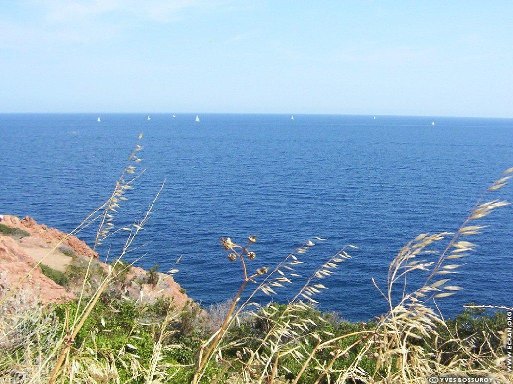 Fond dEcran Le Lavandou plage Photos Provence Saint
